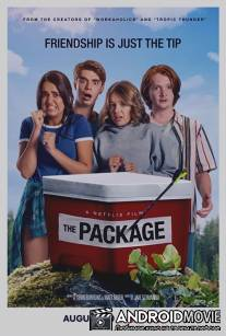 Прибор / The Package